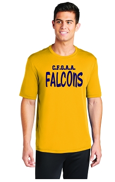 Falcons, Coaches Shirt